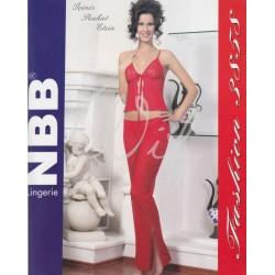 NBB 3858
